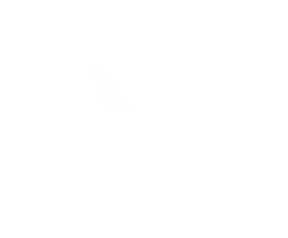 luxury salon SATINE